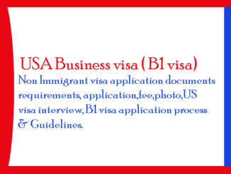 USA Business visa